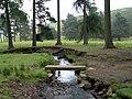 Fox Clough Stream - geograph.org.uk - 458409.jpg