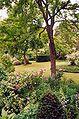 France Loiret Ingrannes Arboretum 05.jpg