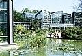 Frankfurt am Main, Palmengarten, der botanische Garten.jpg