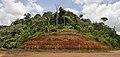 French Guiana tropical soil.jpg