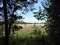 Fußweg von der Blauen Gumpe zum großen Ostersee.jpg