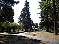 Fuller Park.JPG