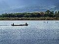 Furiani pêcheurs à l'étang de Biguglia 1.jpg