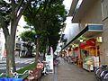 Furukawabashi - panoramio (10).jpg