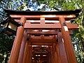 Fushimi Inari-taisha, doors to bamboo forest, Kyoto.jpg
