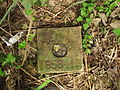 Gaotou - on the top of Jin Mt - survey mark - DSCF3301.JPG