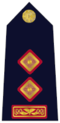 Rank Insignia of Garda Chief Superindendent
