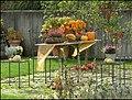 Garten - panoramio (8).jpg
