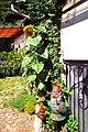 Gartenidylle im Waldprechtstal - panoramio.jpg