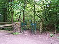 Gate in the Woods, Oughtibridge - geograph.org.uk - 840851.jpg