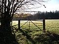 Gate near Whitehaugh Farm - geograph.org.uk - 79153.jpg