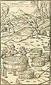 Georgii Agricolae De re metallica libri XII. qvibus officia, instrumenta, machinae, ac omnia deni ad metallicam spectantia, non modo luculentissimè describuntur, sed and per effigies, suis locis (14593912947).jpg