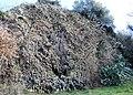 Geosite Pietre Lanciate, Bolsena, Italy.jpg