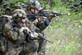 German Joint Terminal Attack Controllers Exercise Northern Strike 2018.png