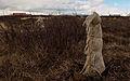 Ghosts in a Landscape (4555253583).jpg
