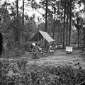 Girl Scouts at Lake Andrews near Tallahassee, Florida (10742073515).jpg