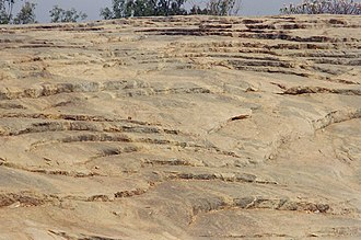 Peninsular Gneiss - Gneissic exposure at the Lalbagh hillock