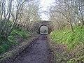 Going to Roslin Glen - geograph.org.uk - 103844.jpg