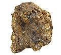 Gold-255180.jpg