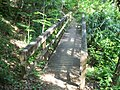 Gold Head Branch SP ravine path05.jpg
