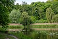 Goloseevsky Park. Orekhovatskie ponds, spring. 04.jpg