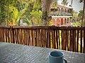 Good morning Sacalum, Yucatan, Mexico.jpg