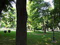 Gradski Park-Skopje (162).JPG