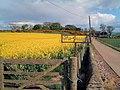 Grange Farm, Inverbervie - geograph.org.uk - 175468.jpg