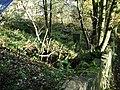 Graveyard - geograph.org.uk - 1043326.jpg