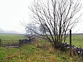 Green Lane to Chelmorton - geograph.org.uk - 88959.jpg