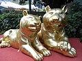 HK 海洋公園 Ocean Park 虎年 Gold Tigers 2010.jpg