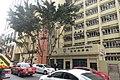HK CWB 銅鑼灣 Causeway Bay 銅鑼灣道 Tung Lo Wan Road 聖保祿學校 St Paul Convent School trees Dec-2017 IX1.jpg