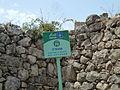 Hadassah Trail P1150471.JPG