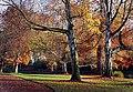 Hagley Park New Zealand. (3) (8069628219).jpg