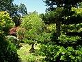 Hakone Gardens, Saratoga, CA - IMG 9157.JPG