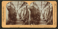 Hanging room, Armour's packing house, Chicago, Ill, from Robert N. Dennis collection of stereoscopic views.png