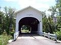 Harris Bridge Wren.jpg