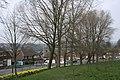 Hasbury - geograph.org.uk - 375863.jpg