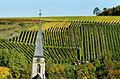 Herbstlicher Spaziergang durch die Becksteiner Weingärten. 07.jpg