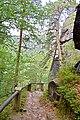 Hiking trail above the village of Hřensko 06.jpg