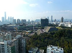 Ho Man Tin Overview 201401.jpg