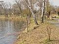 Hohenzollern Kanal - Nordufer (North Bank) - geo.hlipp.de - 35017.jpg