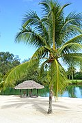 Holiday Inn Resort Vanuatu (16123366363).jpg