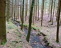 Hopfenmühle5.JPG