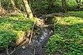 Horn-Bad Meinberg - 2015-05-04 - LIP-004 Naptetal (08).jpg