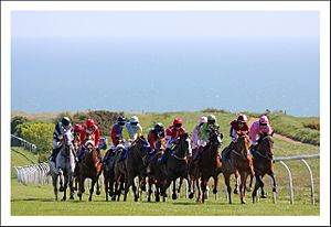 Brighton Racecourse - The unique sight of racing across the downs with the sea in the background