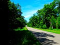 Horsehead Road - panoramio.jpg