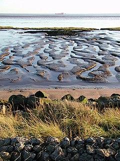 Humber Estuary at Sunk Island