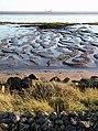 Humber Estuary at Sunk Island.jpg