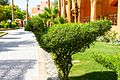 Hurghada, Qesm Hurghada, Red Sea Governorate, Egypt - panoramio (271).jpg